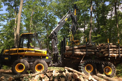 CPA for logging industry